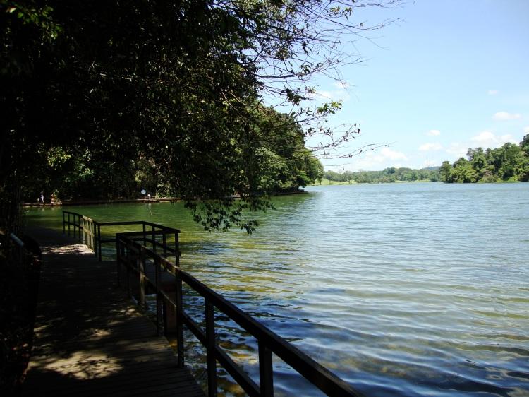 See im McRitchie Reservoir