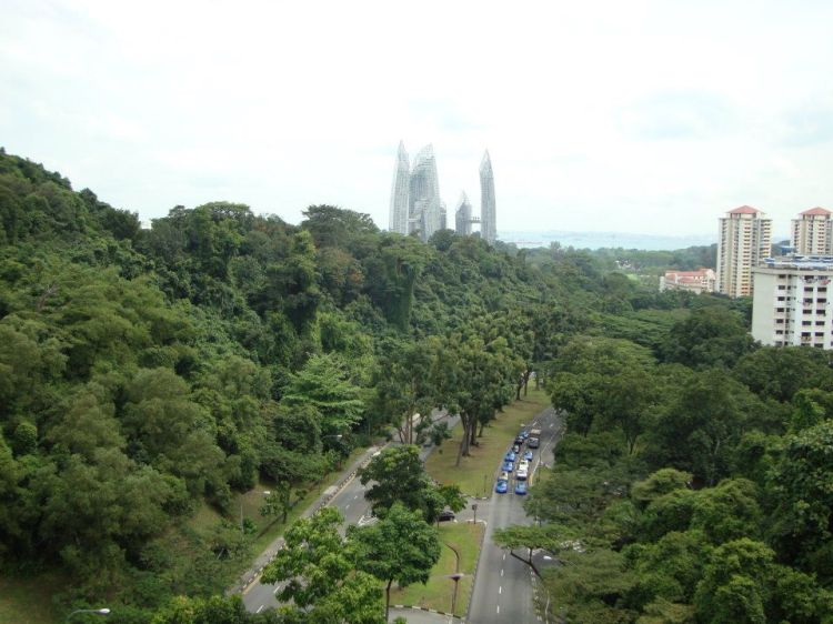 Grünes Singapur